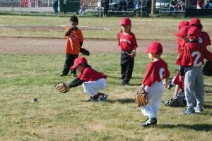 YouthBaseball-RO-1-960x640